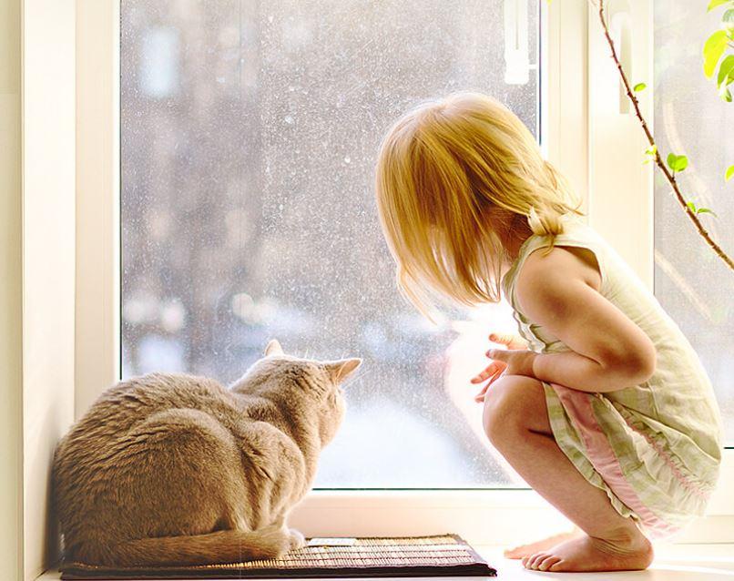 Что означает 100% защита от выпадения детей из окна?